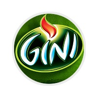 Gini website
